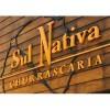 Pizzaria Sul Nativa Gourmet Santana, São Paulo-SP